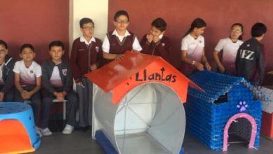 Photo of Gli alunni costruiscono le cucce per i cani abbandonati con materiale riciclato