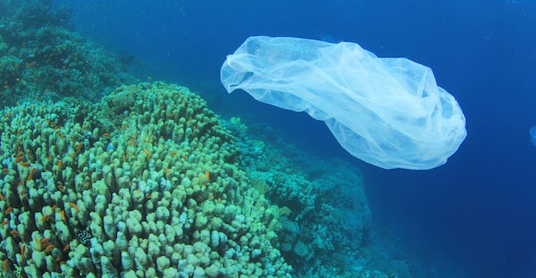 Addio ai prodotti in plastica monouso