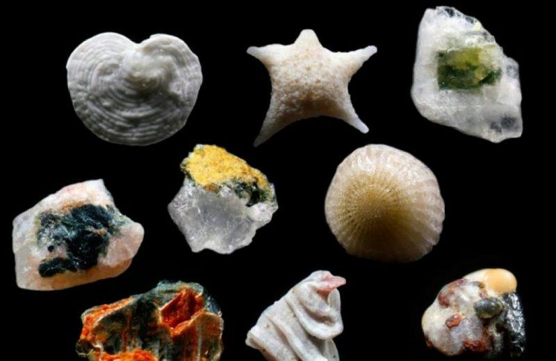Granelli di sabbia ingranditi 300 volte