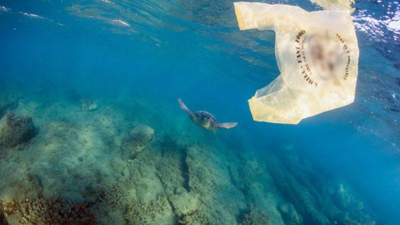 10 motivi per cui non dovremmo utilizzare sacchetti di plastica