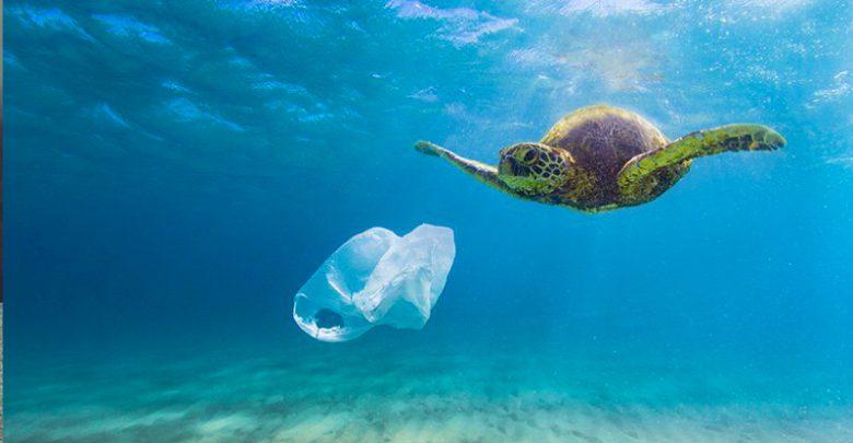 I sacchetti di plastica inquinano