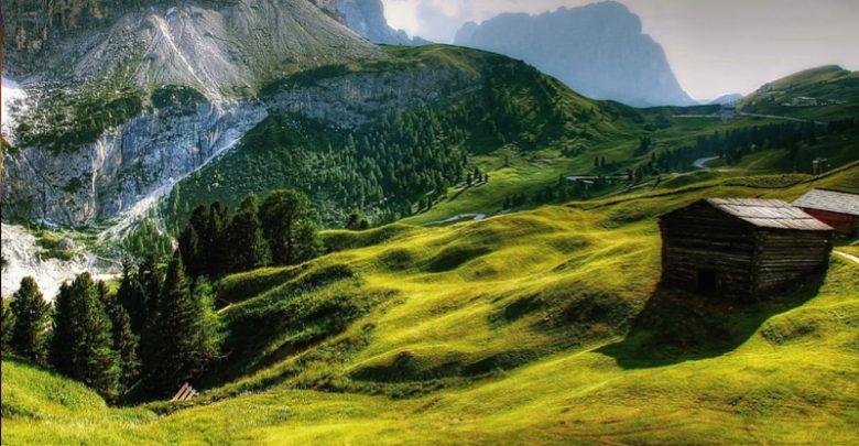 Bagno nella foresta in Trentino