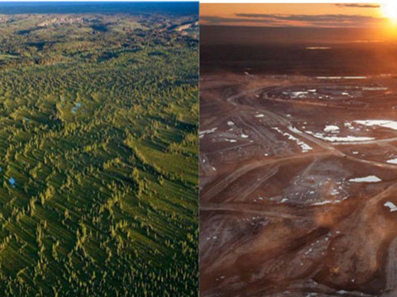 Cambiamenti climatici, conseguenze