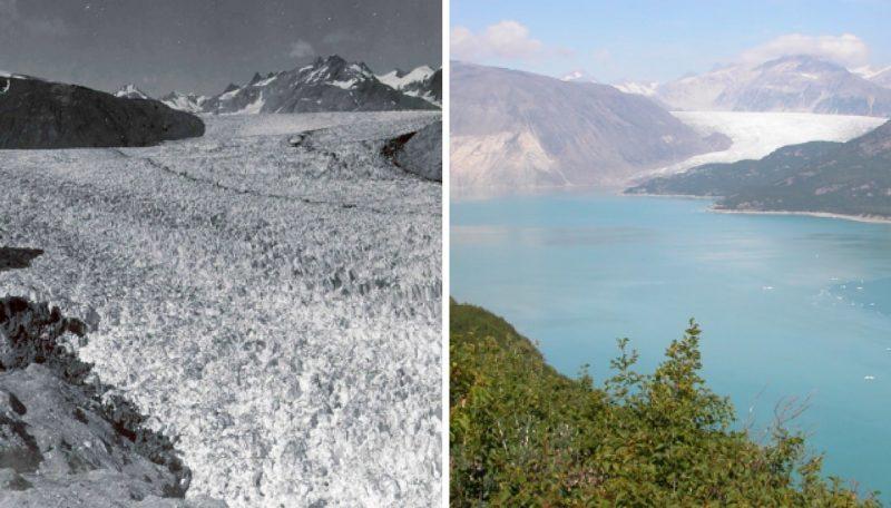 Ghiacciaio Muir, Alaska