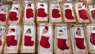 Photo of L'ospedale pediatrico dimette i neonati nelle calze natalizie fatte a mano. Una dolce tradizione che dura da 50 anni