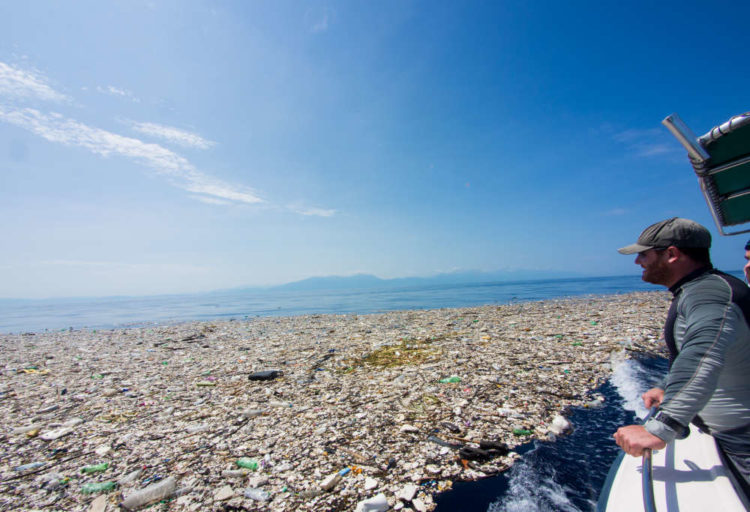 Un mare di plastica scoperto ai Caraibi