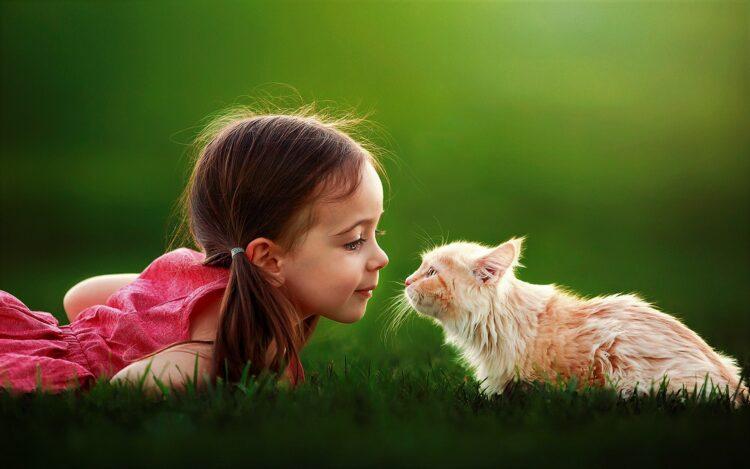 Gli animali domestici sono terapeutici