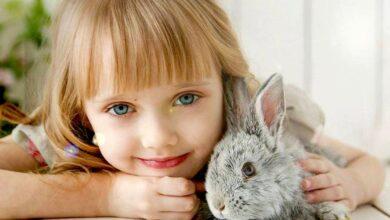 Photo of I bambini che crescono con un animale domestico saranno adulti più sensibili e di successo