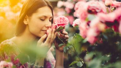 Photo of Le donne che amano le rose hanno l'eleganza nell'animo. Le caratteristiche e la personalità