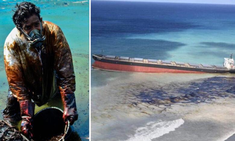 Popolo di Mauritius dona i capelli per salvare il mare