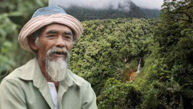 Photo of Un nonno di 68 anni ha piantato più di 11.000 alberi per riportare l'acqua nei boschi e contrastare la deforestazione