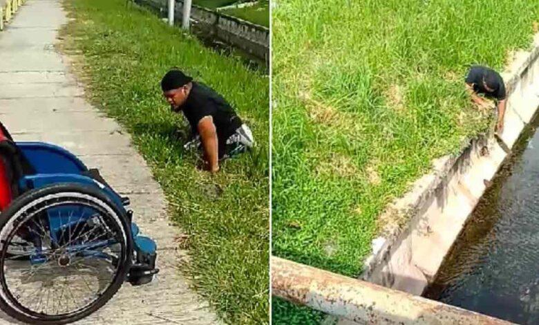 scende dalla sedia a rotelle per salvare il gatto