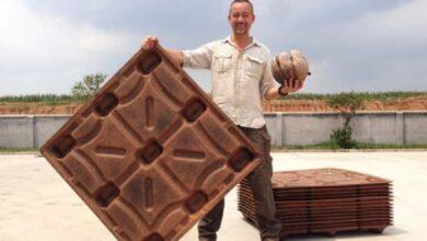 Photo of Pedane di buccia di cocco: la soluzione del tutto ecologica in grado di salvare 200 milioni di alberi