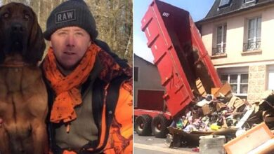 Photo of Gli ex inquilini lasciano la casa piena di spazzatura, il proprietario la scarica tutta davanti la loro nuova abitazione