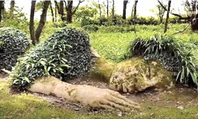 imponente scultura vivente che cambia aspetto