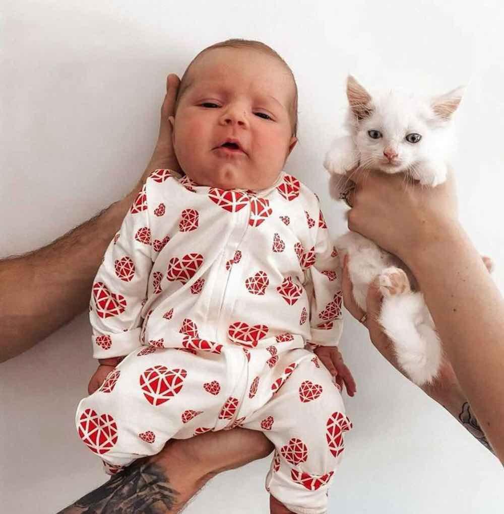 Una donna incinta incontra una mamma gatta randagia 2