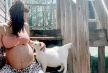 Photo of Una donna incinta incontra una mamma gatta randagia e diventano compagne di gravidanza: condividono insieme il momento del parto
