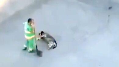 Photo of Un operatore ecologico rende più felice la giornata di un cane: il video che riprende l'ignaro benefattore rallegra i cuori