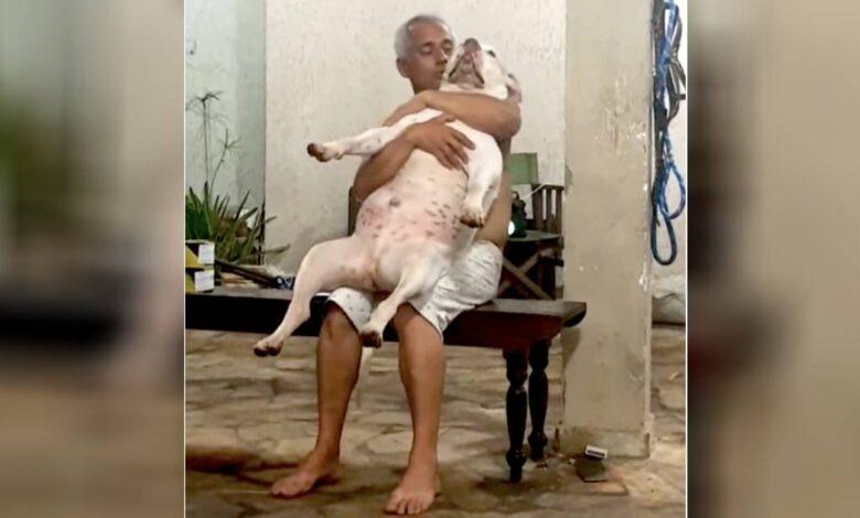 Un uomo che non voleva affatto un cane