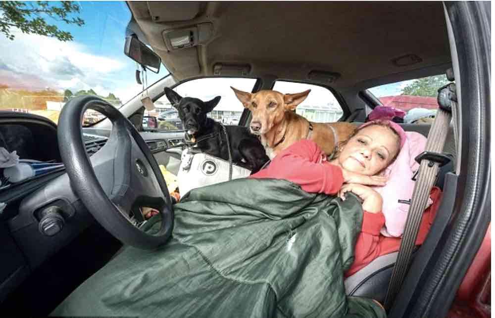 Una donna di 57 anni vive in macchina con i cani